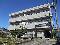 サンクレスト富士見マンションA[203号室]の外観