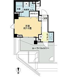 東京都港区南麻布3丁目の賃貸マンションの間取り