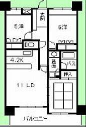 広島県広島市安佐南区緑井1丁目の賃貸マンションの間取り