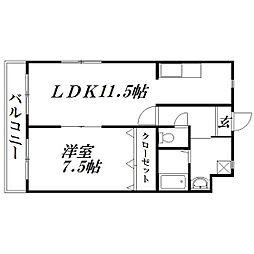 静岡県浜松市浜北区横須賀の賃貸マンションの間取り