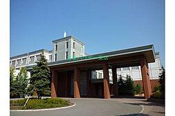 北海道札幌市東区北十条東17丁目の賃貸マンションの外観