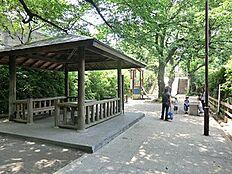 周辺環境:たぬき山公園