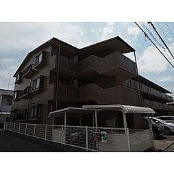 静岡県焼津市焼津の賃貸マンションの外観