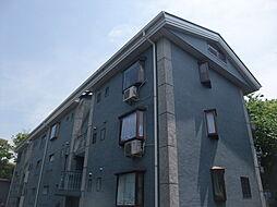 東京都板橋区大谷口の賃貸マンションの外観