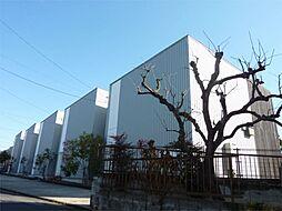 サニーコート上津[3号室]の外観