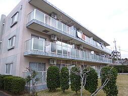 GREACE RESIDENCE グレースレジデンス東松戸[3-205号室]の外観