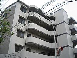グレースコーポ[2階]の外観