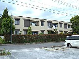 埼玉県川口市安行出羽4丁目の賃貸アパートの外観