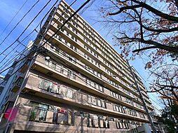 グランディス新八柱[11階]の外観
