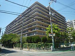 堺市堺区柏木町2丁