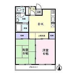千葉県松戸市新松戸南1丁目の賃貸マンションの間取り