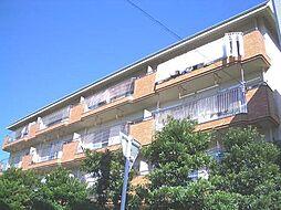 徳島県徳島市中昭和町2丁目の賃貸マンションの外観