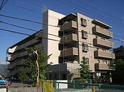 スペランツァ松ヶ丘[4階]の外観