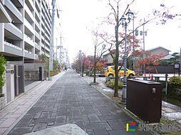 カンフォーラ松原[2階]の外観
