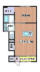 セレーナクオーレ[1階]の間取り