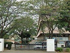 土浦市立都和小学校(746m)