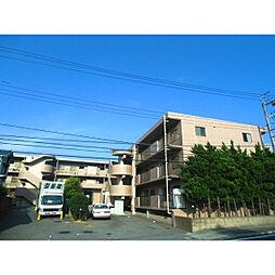 千葉県市原市山田橋の賃貸マンションの外観