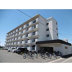 岐阜県瑞穂市穂積の賃貸アパートの外観