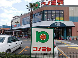 スーパーマーケット コノミヤ 高槻店(843m)