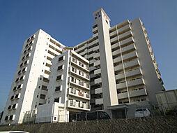 皇后崎スカイマンション[5階]の外観