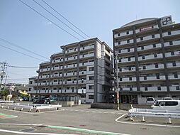 第5元木ビル[5階]の外観