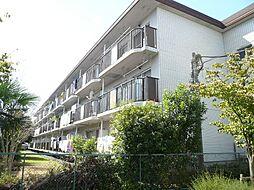 第11モロマンション[2階]の外観