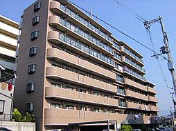 コーポマサキ[5階]の外観