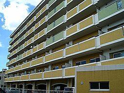 ブランチ913[2階]の外観