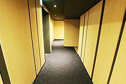 廊下部分です。建物外からは住戸扉が見えないプライバシーに配慮した内装です。