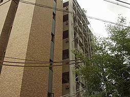 Vis-a-Vis[5階]の外観