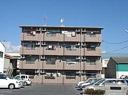 静岡県浜松市南区都盛町の賃貸マンションの外観