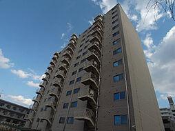HOUSE・北柏2号棟〜ハウスキタカシワ2ゴウトウ〜[5階]の外観