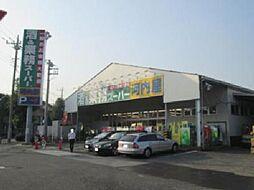 [一戸建] 神奈川県川崎市中原区井田三舞町 の賃貸【/】の外観