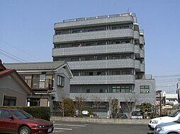埼玉県川口市中青木5丁目の賃貸マンションの外観