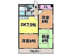 愛媛県松山市今在家町の賃貸マンションの間取り