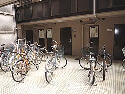 パラツィーナ甲子園口[4階]の外観
