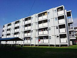 ビレッジハウス勝田1号棟[3階]の外観