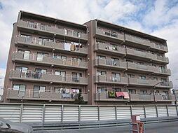 大阪府四條畷市中野新町の賃貸マンションの外観