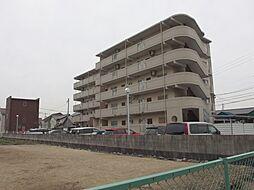 愛知県岡崎市北本郷町字野添の賃貸マンションの外観