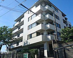 堺市西区浜寺諏訪森町中2丁
