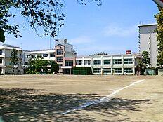 田園調布中学校