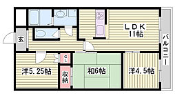 兵庫県加古川市平岡町一色の賃貸マンションの間取り