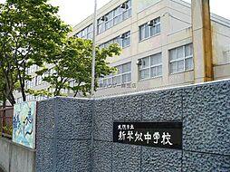 札幌市立新琴似中学校1191m 1191m