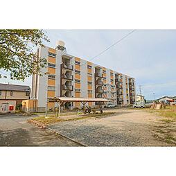 岡山県岡山市東区東平島の賃貸マンションの画像
