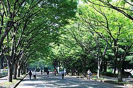 都立駒沢公園西口(823m)