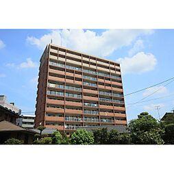 熊本県熊本市中央区黒髪2丁目の賃貸マンションの外観