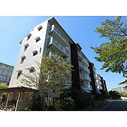 京都府木津川市相楽台7丁目の賃貸マンションの外観