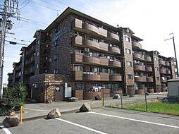 第三亀井マンション[113号室]の外観