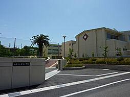 知多市立新田小学校まで1300m