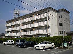 新栄ビル[305号室]の外観